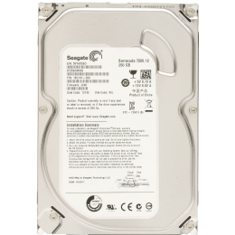 Жесткий диск 3.5 Seagate 250Gb ST250DM000